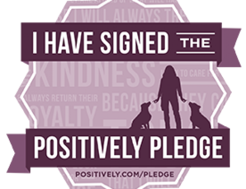 Take The Positively Pledge